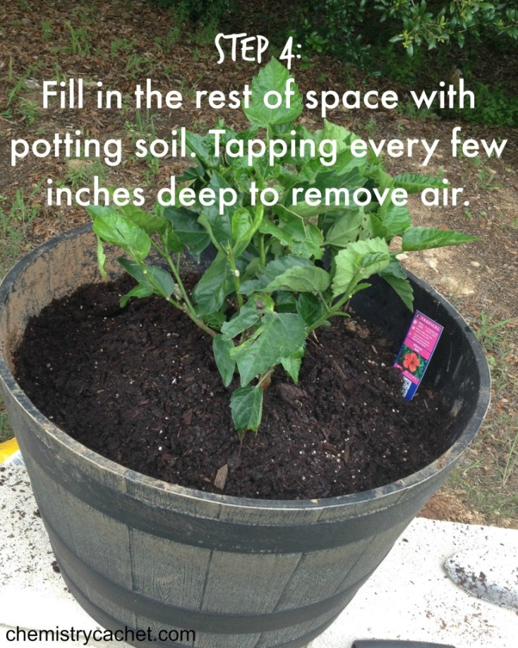 Step 4 Fill in the rest of the space with potting soil.