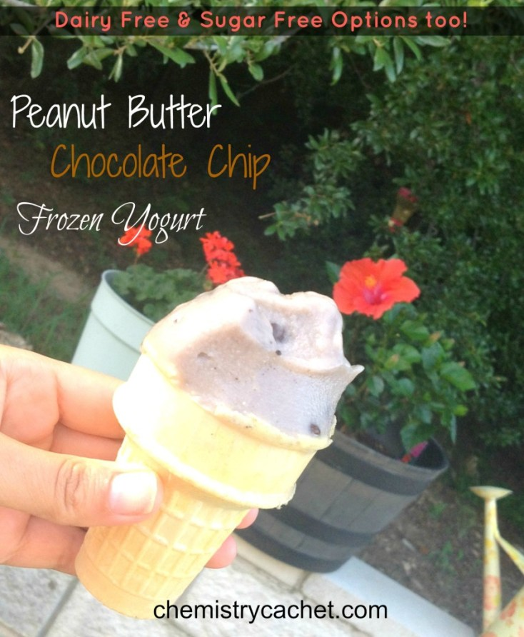 Easy, Healthy Peanut Butter Chocolate Chip Frozen Yogurt with dairy free and sugar free options too! chemistrycachet.com