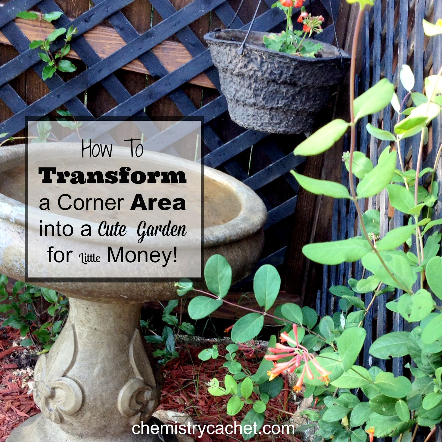 How to transform a boring backyard corner for little money for Small corner garden designs