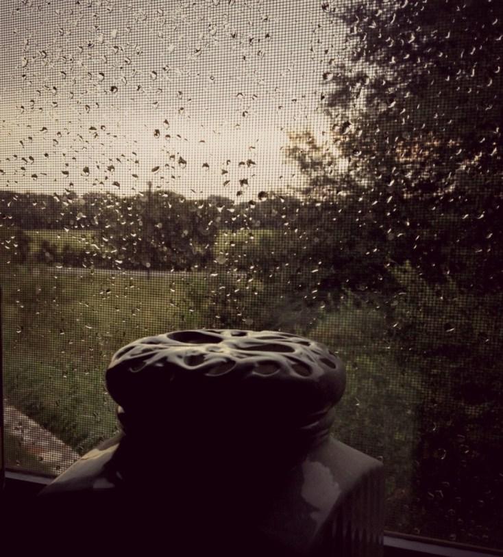 Rain from the kitchen window