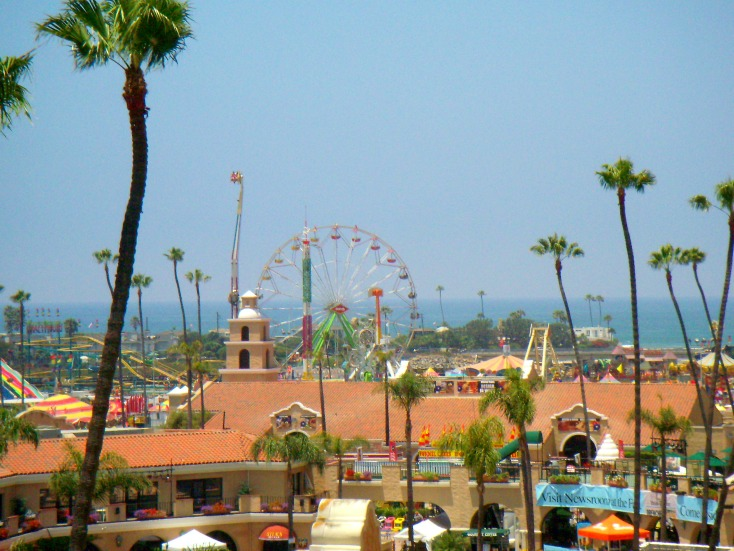 Summer Memory: The San Diego County Fair Adventure