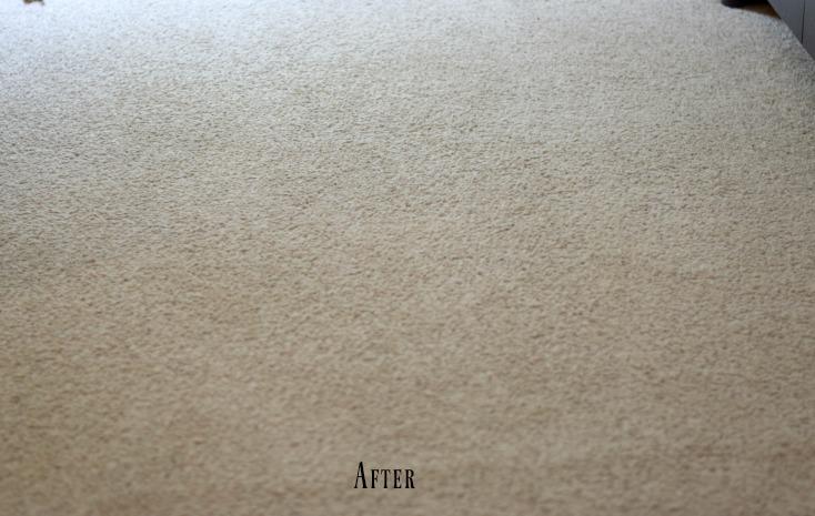 Chemistry Cachetu0027s Homemade Carpet Cleaner Recipe. Safe, Easy, And Cheap  Carpet Stain Remover