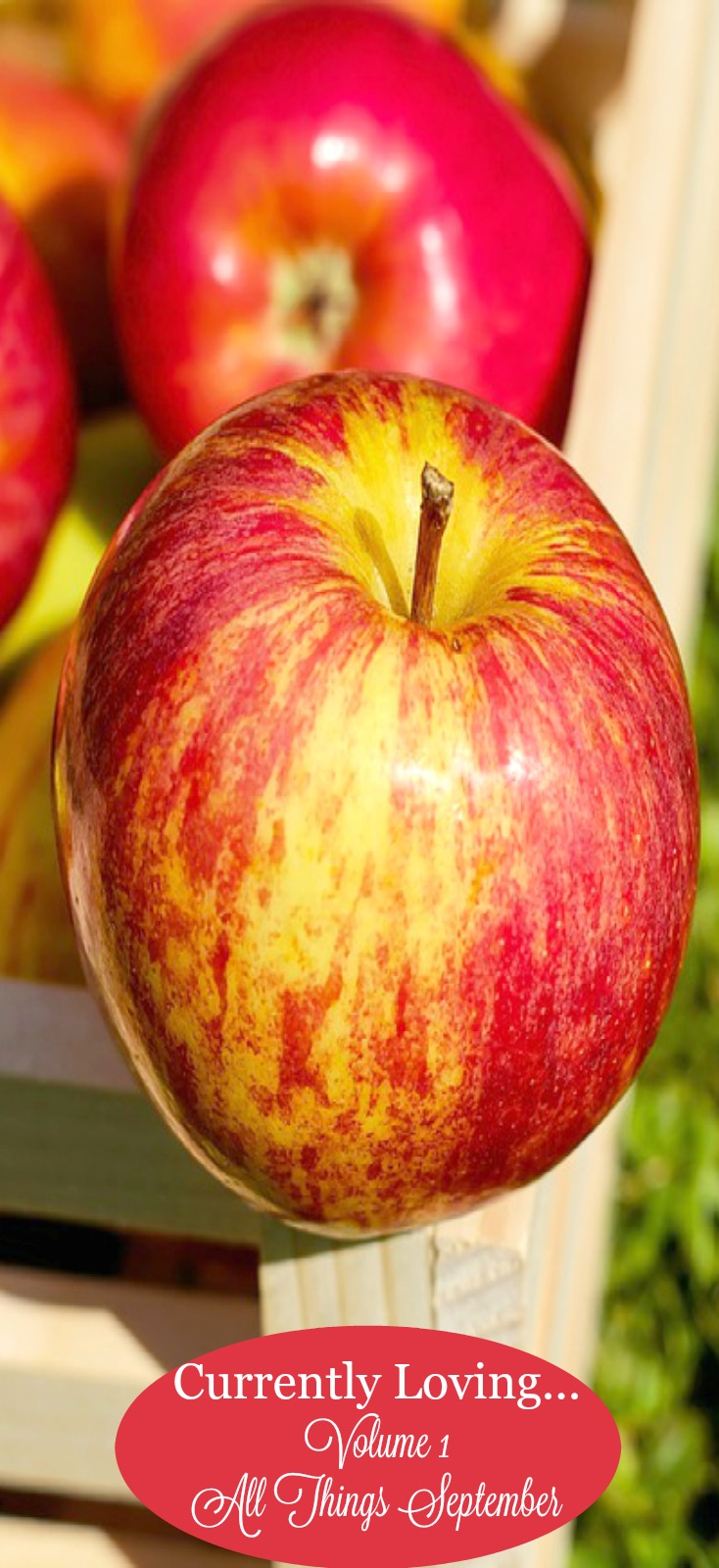 Currently loving...apple season! on chemistrycachet.com