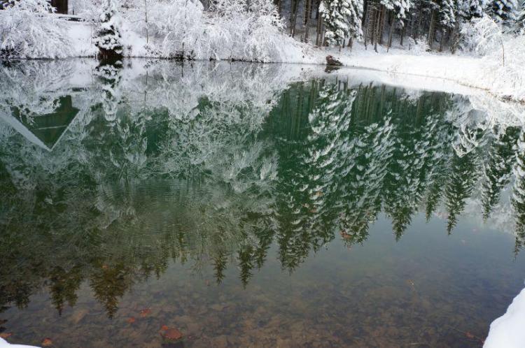 Naše divje jezero v snegu