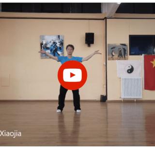 Pescara 2019: Esibizione del Maestro Chen Peishan