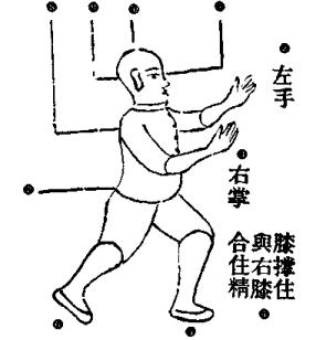 il punto Bai Hu in Xiao Qin Na