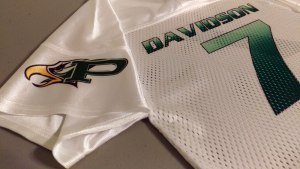 close-up-sleeve-and-back-of-jersey - Copy