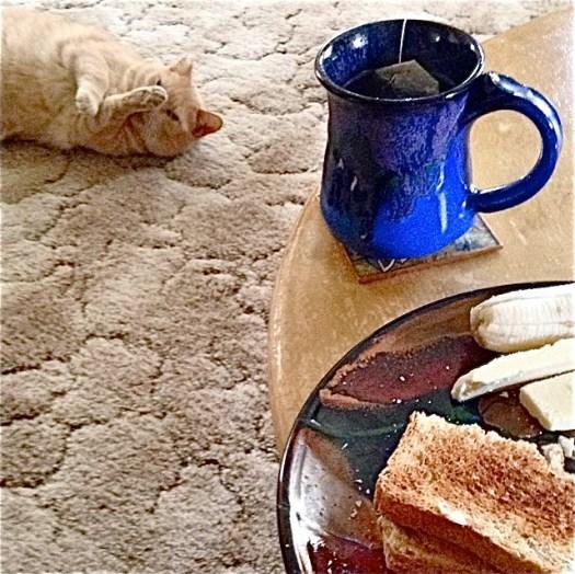 Prairie Fire Pottery, Joel Cherrico Pottery, Nessie the Bungalow Cat