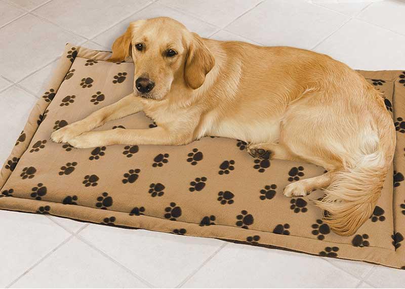 meilleur tapis pour chien guide avril 2021