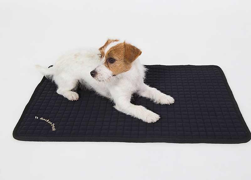 meilleur tapis pour chien guide avril