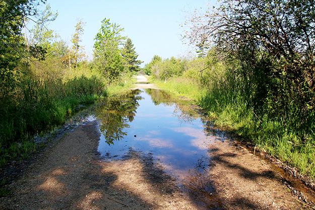 flooding-road