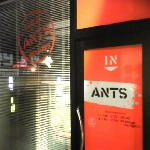 富山県のビリヤード場「ANTS」に行ってきた