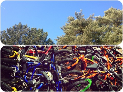 Blue_skies_and_lots_of_bikes_at_Center_Parcs