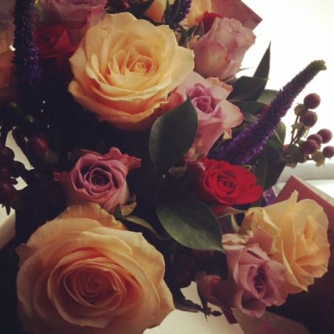 Rose Envy
