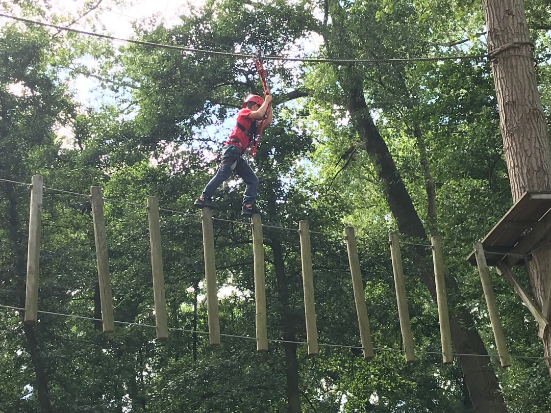 Kong high ropes on the stumps
