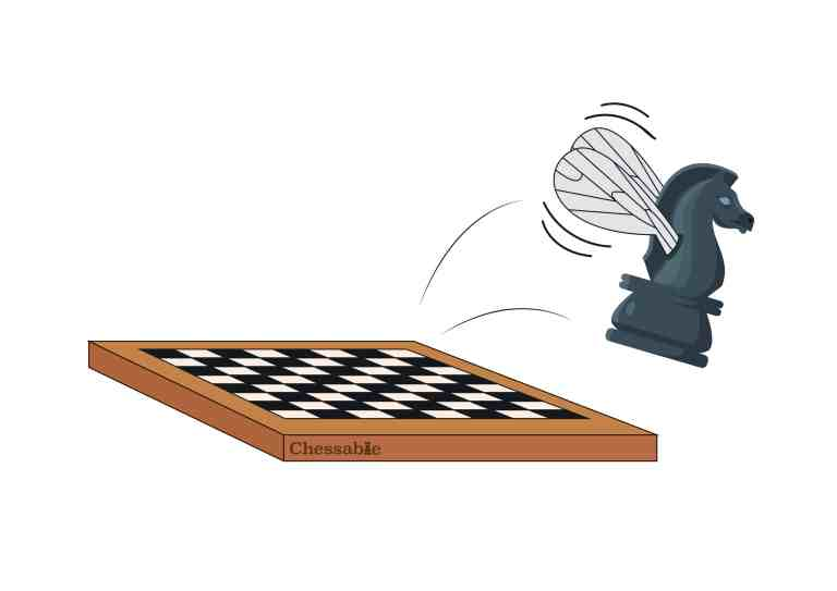 Chess and Psychology: Why chess is like a fruit fly.