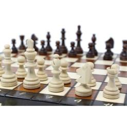 チェスセット プレミアム・マグネティック 27cm 7