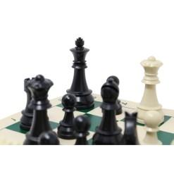 チェスセット ABSスタンダード 44cm 10