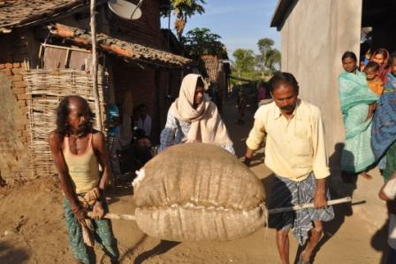 helping farmers help themselves ciats contribution to - 448×298
