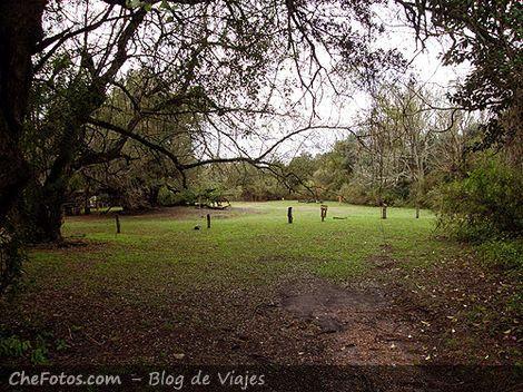 Acampar en Parque Nacional Colón