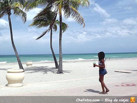 Qué se puede hacer o visitar en un viaje a Miami?
