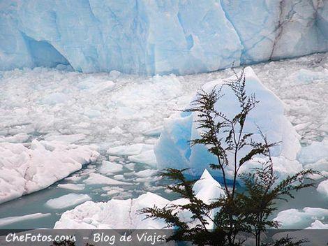 Hielos flotando en Lago Argentino - Patrimonio Mundial de la UNESCO