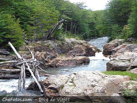 Bosque y salto del río Pipo, Postal