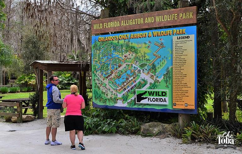 aligator-park-florida