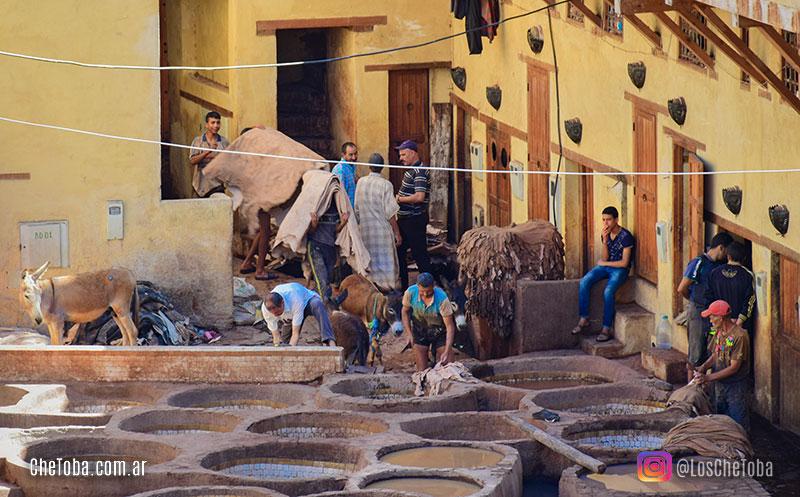 medina de Fez, fotografía de viajes