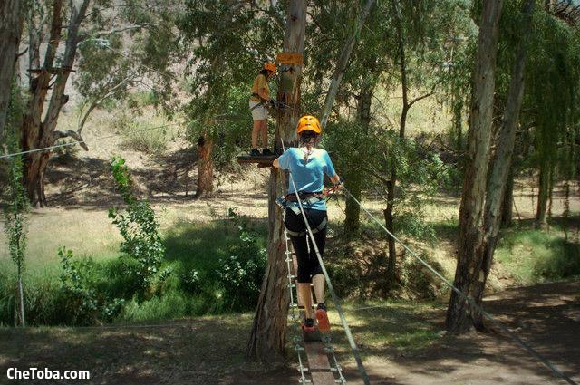 arborismo-en-mendoza