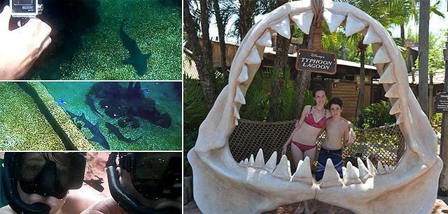 Uno de los tantos atractivos de Typhoon Lagoon, nadar en el arrecife de tiburones.