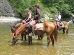 rando cheval saumur