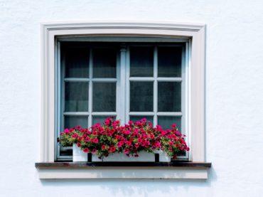 5-reasons-to-hire-a-window-washing-company
