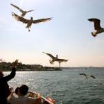 9/22 istanbul 05: Cerkez Manti, Barfly in Taksim