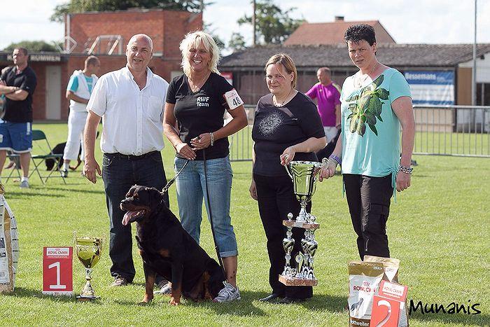Pontus V1, Best Male and Best of Breed BELGIUM CLUDSIEGER 2012 Judge K.Niemelä