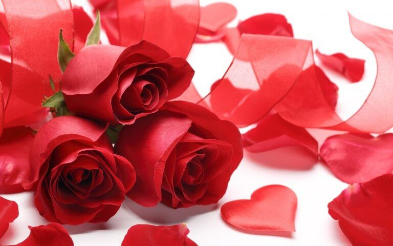 rose day 2020 sms