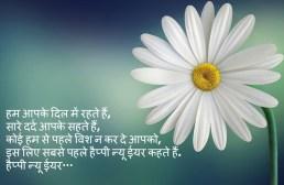 Best Happy New Year Wishes In Hindi For 2018 - Chhota Ghalib