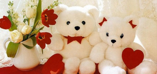 Happy Teddy Bear Day SMS