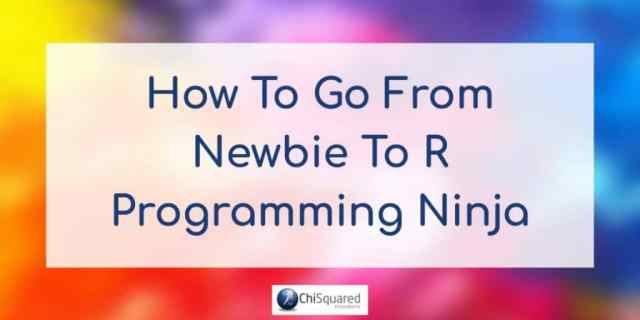 How to go from Newbie to R Programming Ninja