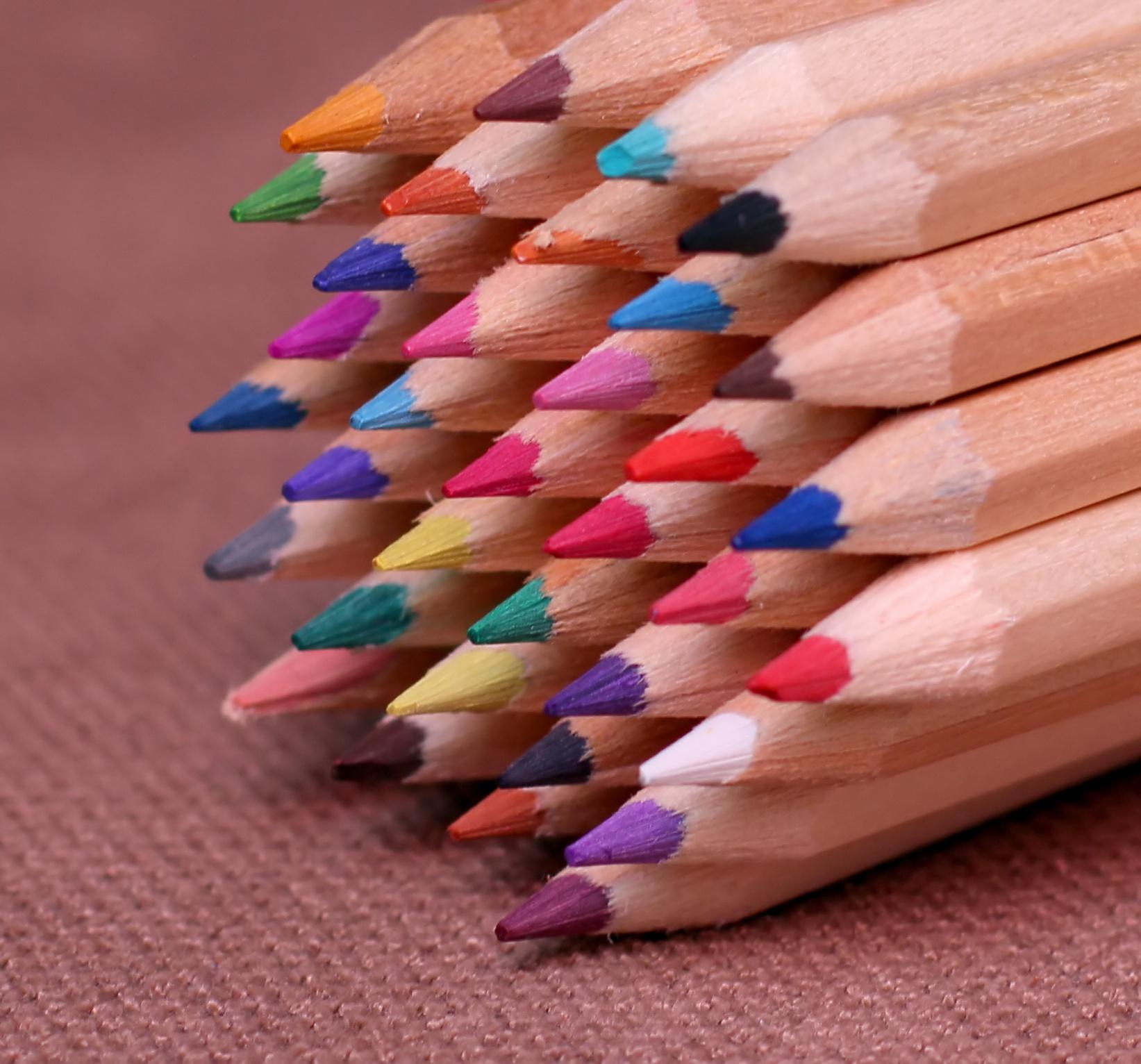 【ブラジル】大人に塗り絵が人気 ストレス解消効果も