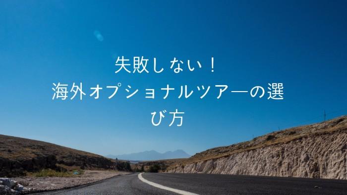 「海外旅行オプショナルツアー」の画像検索結果