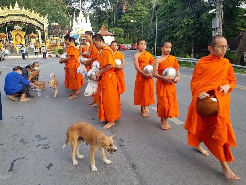 Walking Buddhist monks