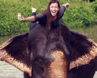 Fun elephant experience!