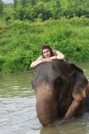 Serene moment on an elephant