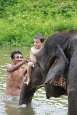 Kid having fun with an elephant