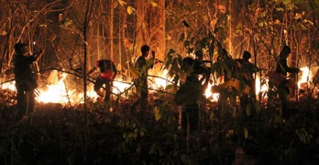 Thai forestry officials and soldiers attempt to control a forest fire in Chiang Mai province