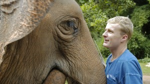 John Roberts of The Golden Triangle Asian Elephant Foundation