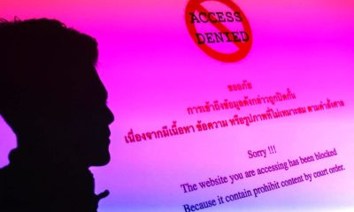 Thailand Eases Restrictions on the Trade and Export of Elephants