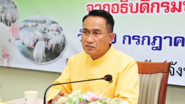 Thai Government Denies Outbreak of African Swine Fever in Chiang Rai