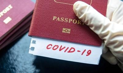 """Covid-19 """"immunity passport"""""""